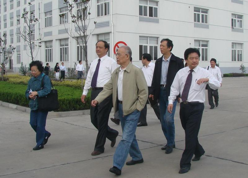 兴化市及戴南镇陪同,戴总领导李长参观我通辽别墅图片